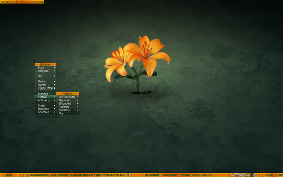 Orange Flowers skin