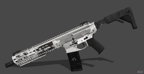 SIG MCX - Two-Tone Style (Rigged) by VECTORsan