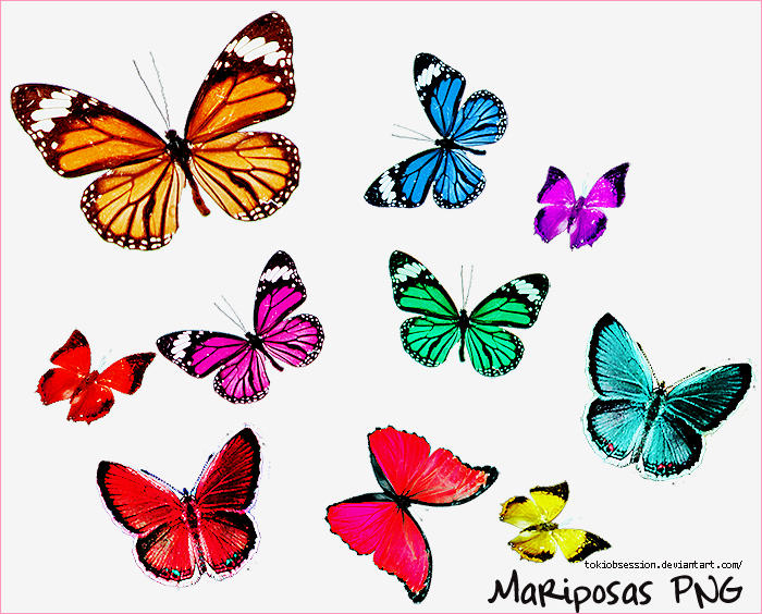 Mariposas PNG by ~tokiobsession on deviantART