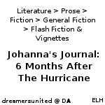 Johanna's Journal: 6 months after the Hurricane by dreamersunited