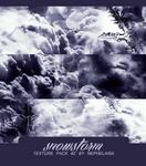 Snowstorm By Nephelaisa