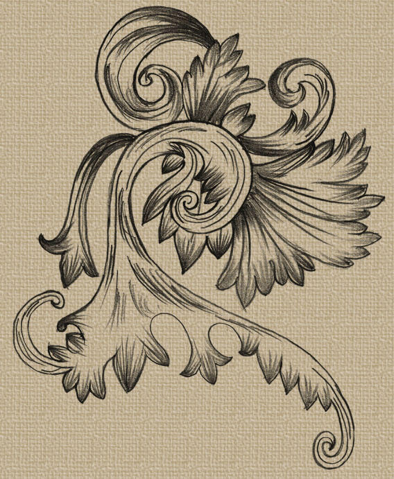 Hand Drawn Decorative Vector by 123freevectors