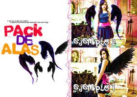 pack de alas negras. by loveandstyle