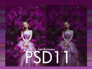 Psd11 by tributesena