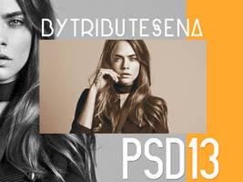 PSD13 by tributesena