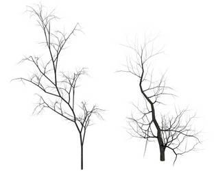 Dead Trees by TexelGirl-Stock