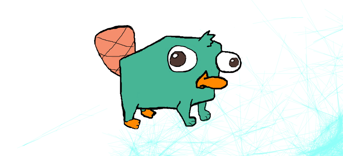 Baby perry the platypus with hat images amp pictures becuo