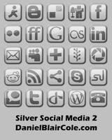 Silver Social Media Icons 2 by Technikill