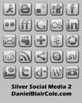 Silver Social Media Icons 2