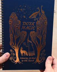 Dusk Magic colouring art book (video)