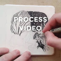 Drawing process: Fly by Night