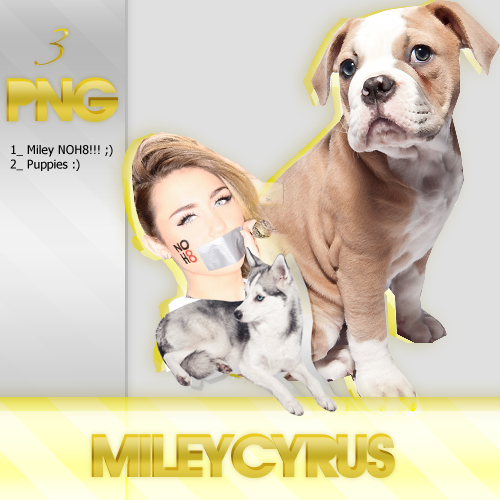 Miley Cyrus NOH8 + Puppies PNG's by BlingDesignsART