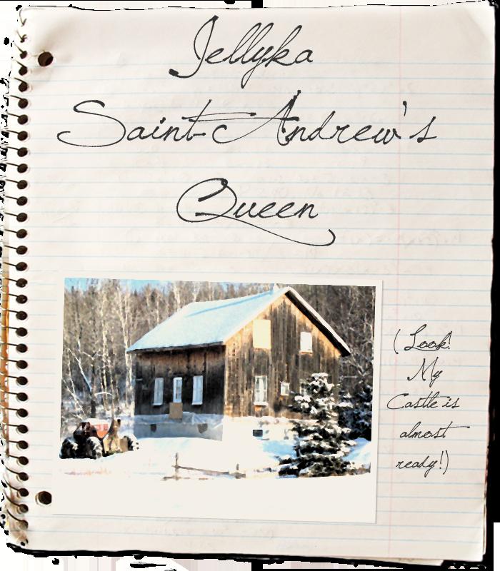 Saint-Andrew's Queen by Jellyka