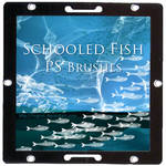 Schooled Fish - PS Brush