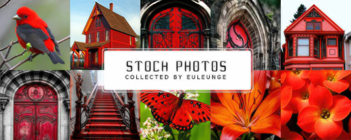11 stock photos collected by euleunge by euleung