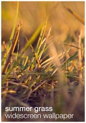 Summer Grass Wallpaper