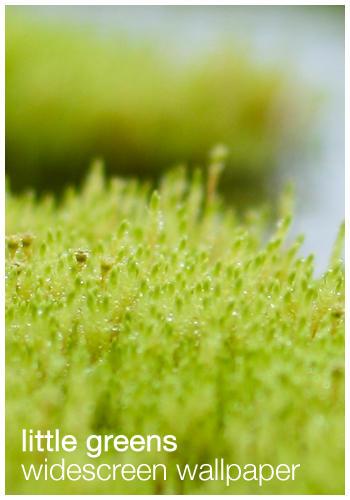 Little Greens - Wallpaper by plonko