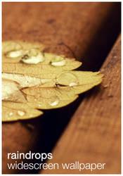 Raindrops - Wallpaper