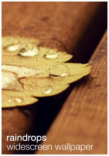 Raindrops - Wallpaper by plonko