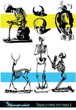 Skeletons vectors (I)