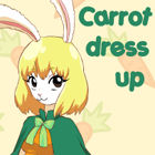 Carrot dress up