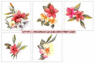 Collection  flower07