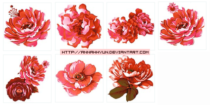 Collection  flower09