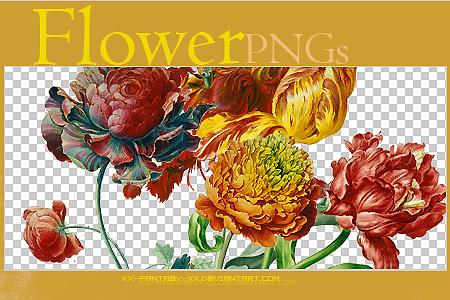 Flower PNGs..