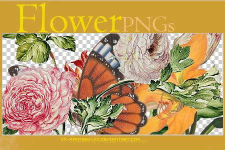 PNG Flower ..2 by Xx-Fantasy-xX