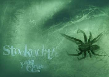 047 - Arachnophobia by Stockudith
