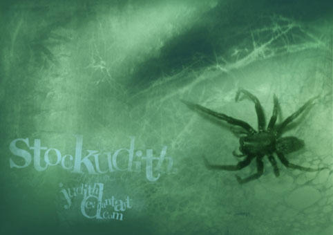 047 - Arachnophobia by Stockudith
