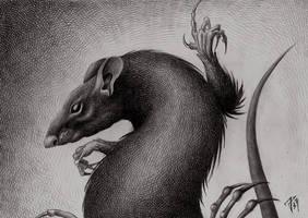 Jump, rats! by sjxxloe