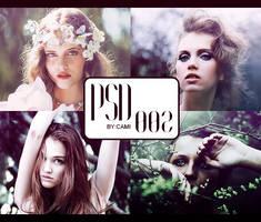 PSD 002 by kamimcr