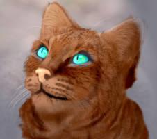 Bobcat to cat by kyrisnowpaw