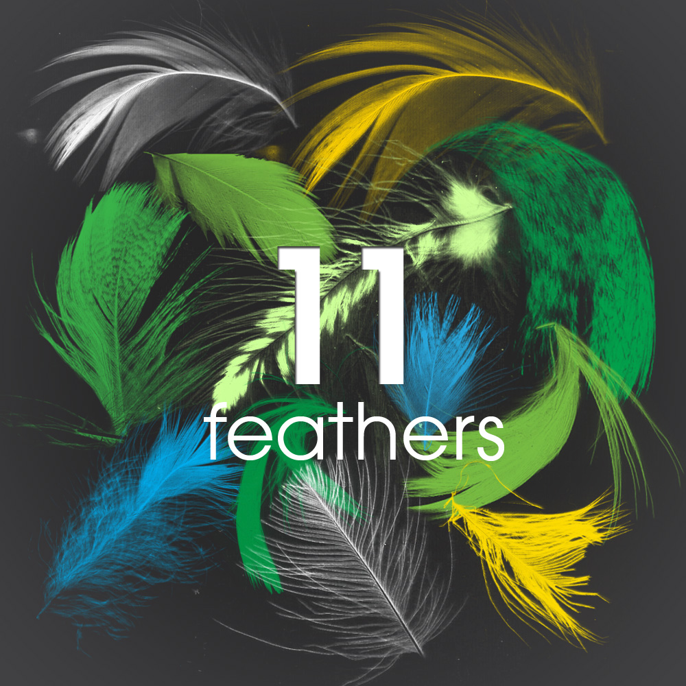 11 Feathers - PS brush