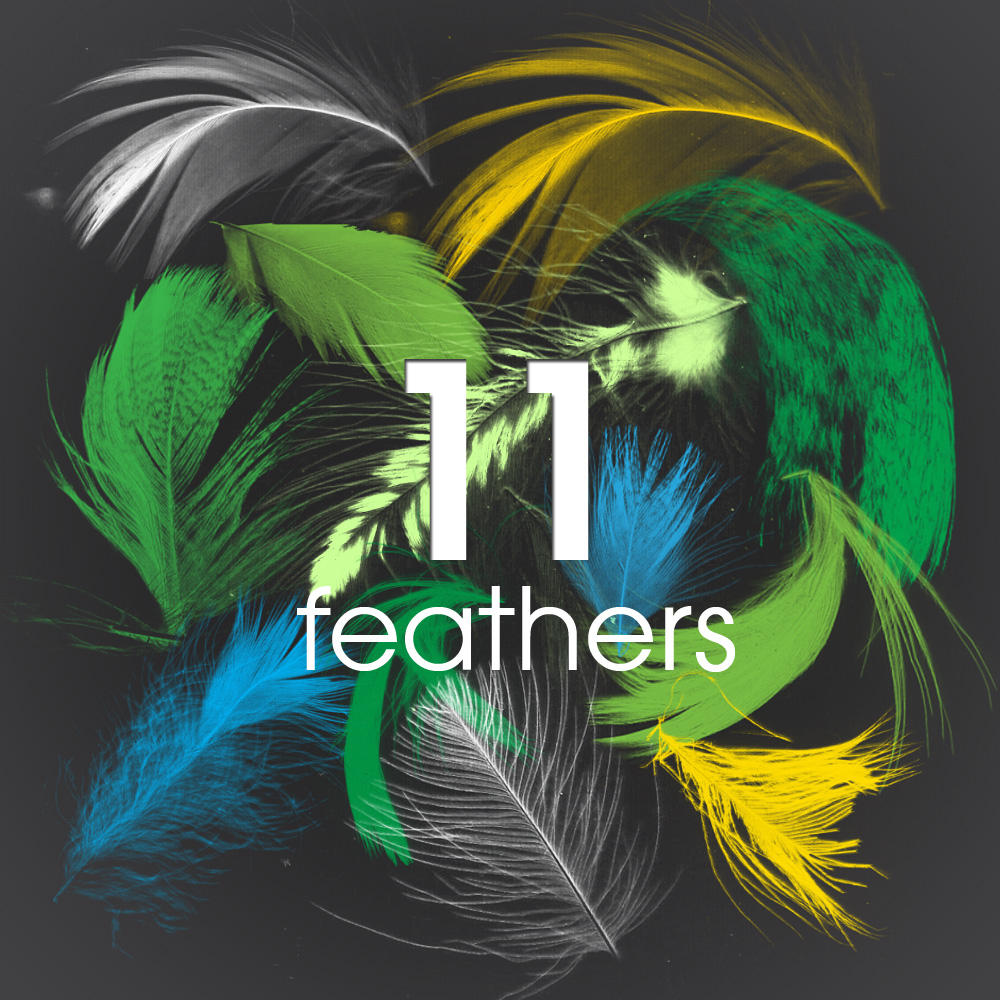 11 Feathers - PS brush by Muiskis
