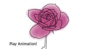 Rotoscoped Rose