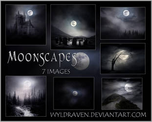 Moon Landscapes Stock Pack by wyldraven