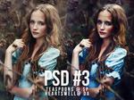 PSD #3