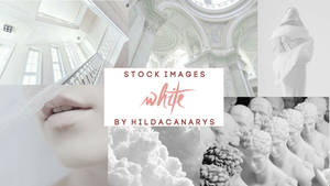 White - Stock Images