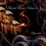Fractal Flames Volume 4