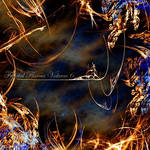 Fractal Flames Volume 6