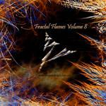 Fractal Flames Volume 8