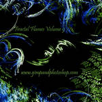 Fractal Flames Volume 9