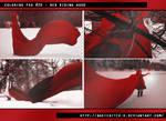 PSD #20 - Red Riding Hood