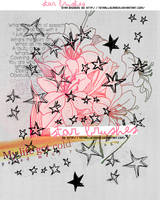 Stars Brushes by TotaallyCraazy