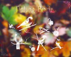 Nature Birds {Brushes} by Julieta7599
