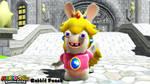 (MMD/FBX Model) Rabbid Peach Download