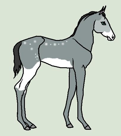 Horse Ship It #33 - Estella x Blue by mkayswritings