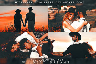 PSD COLORING #34 [WILDEST DREAMS] by irwinbae